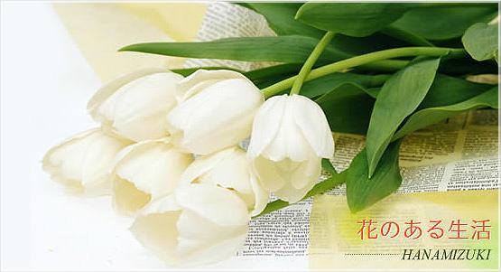 花のある生活 HANAMIZUKI